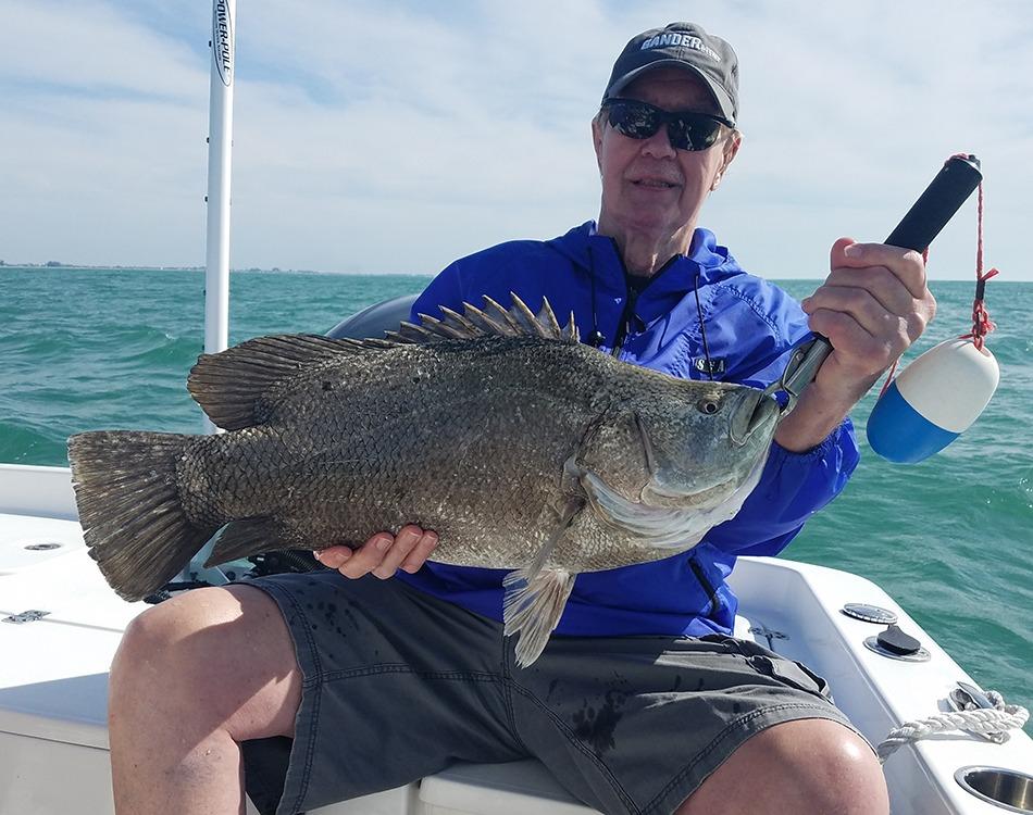 Boca Grande Nearshore Fishing Charter Tripletail
